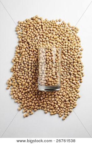 stock image of the soya bean