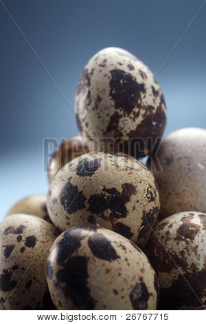 Stack of quail eggs isolated on the blue background.