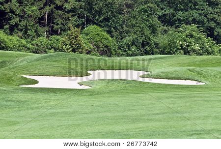Green grass and sand traps on the golf course