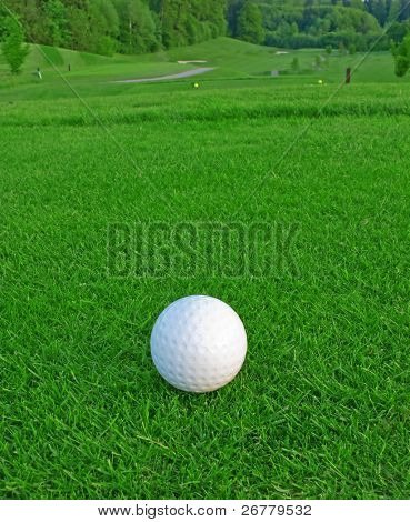 golf ball on the green grass of the golf course