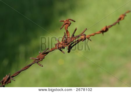 Rusty Barbwire Closeup, Shallow Dof