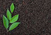 image of black tea  - Black tea with leafs - JPG