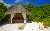 picture of beach party  - Nice shelter for a couple in love - JPG