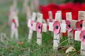 Remembrance Poppies On Wooden Crosses, To Commemorate The Loss Of Servicemen In World Wars And Confl poster