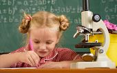 Schoolgirl Make Experiment In Science At Lesson. Little Girl Run Scientific Experiment With Microsco poster