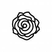 Rose Icon Isolated On White Background. Rose Icon In Trendy Design Style. Rose Vector Icon Modern An poster