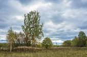 Beautiful Autumn Landscape On A Cloudy Day With A Cloudy Sky. poster