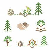 Tree Icons, Planting Tree. Set Of Colorful Icons With Trees And Tree Planting.vector Available. poster