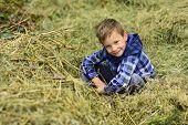 Im A Farm Boy. Little Boy In Barn On Farm. Little Boy Enjoy Village Farm Holidays. Small Child Relax poster
