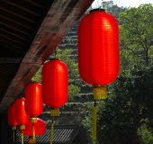 red lanterns with chinese letters printed. It brings good luck and peace to prayer. It was at night