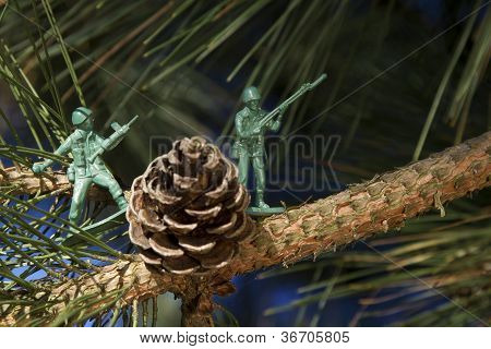 Fighting For The Tree