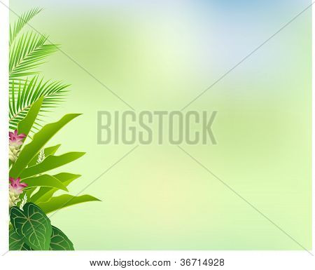 beautiful tropical flower and forest background