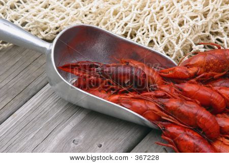 Boiled Crawfish In Scoop