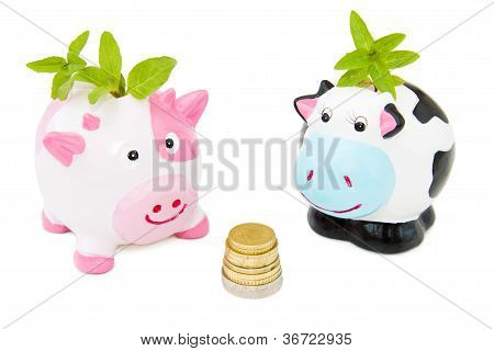 Saving Money With Piggy Banks