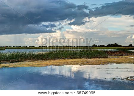 Shannon river landscape, County Offaly, Ireland