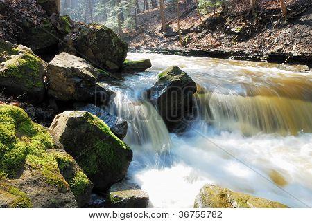 River Bank Rocks