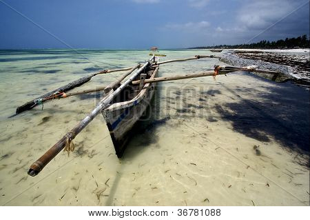 Piroga And Zanzibar