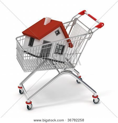 shopping cart house