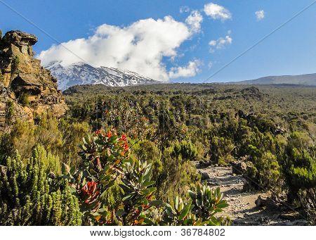 Kibo Cone, Mount Kilimanjaro National Park