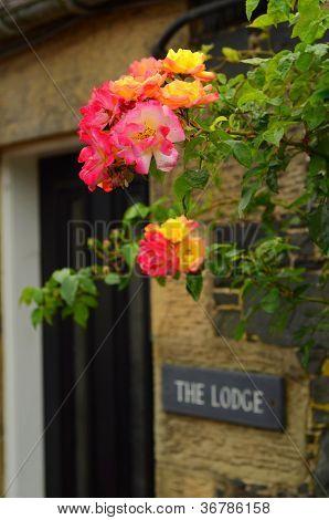 Charming Cottage Door