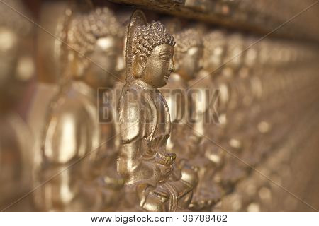 Buddha statue Looking at the temple in Thailand.