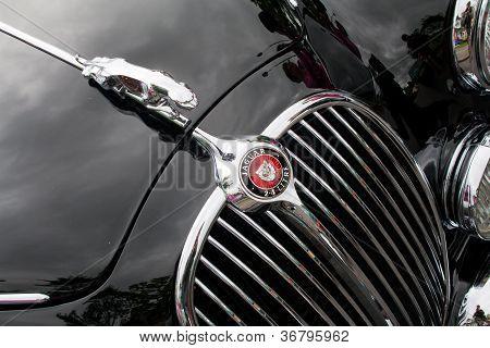 Jaguar Autos