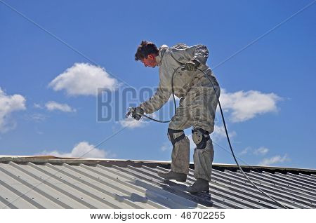 Painting The Roof