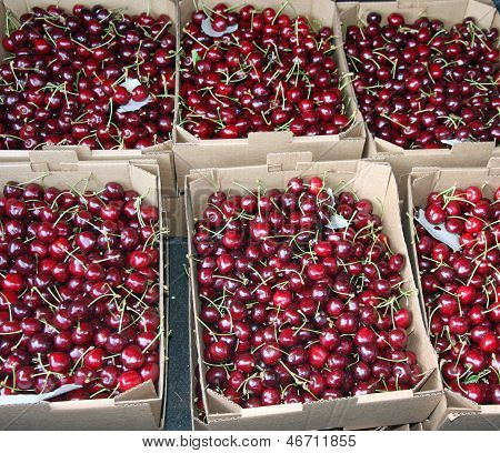 Crates Full And Basket Of Great And Juicy Ripe Red Cherries On Sale From Greengrocers