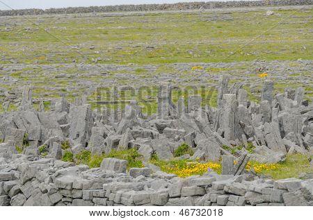 Irish landscape - view from Dun Aengus, an ancient fort on Aran Islands