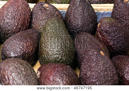 Avocado on the Farmers Market , a close up shot