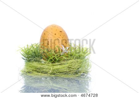 Yellow Egg In Green Nest - Easter Concept