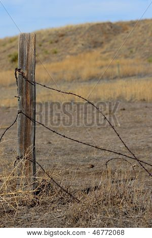 Barbed Wire and Fence Post with Prairie Background