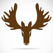pic of deer horn  - Vector image of an deer head on a white background - JPG