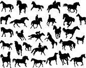 stock photo of running horse  - Big vector collection of different horses silhouettes - JPG