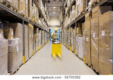 Worker In A Warehouse