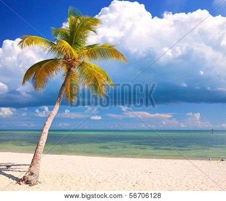 Summer at a tropical paradise in Florida Keys USA