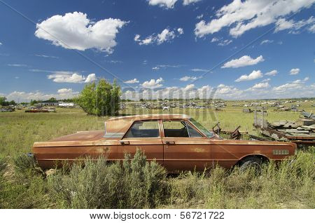 abandoned car in a meadow