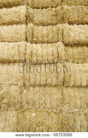 beauty background of straw bales