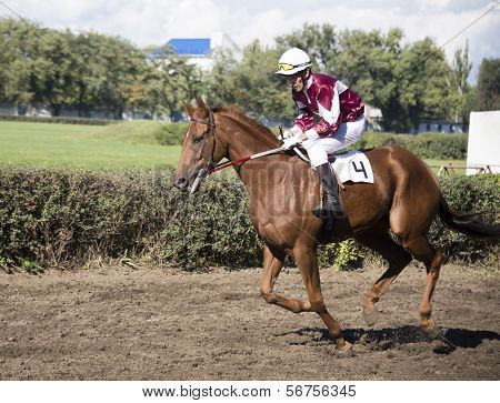 Rostov-on-don, Russia-september 22 - The Rider Rides A Horse At Full Gallop In Rostov-on-don