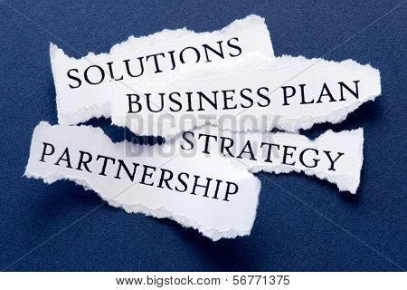 Roughly cut slips of paper with business  concepts such us solutions, business plan, strategy, partnership