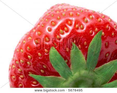 Macro Image Of Ripe Strawberry On White Background