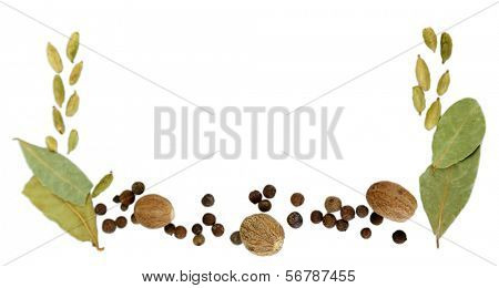 Herbs and spices border, isolated on white