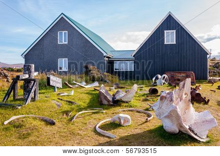 Whale Bones In Djúpalónssandur Museum, Iceland