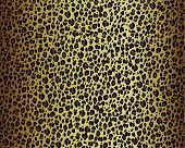 image of camoflage  - Leopard or Cheetah Skin Vector - JPG