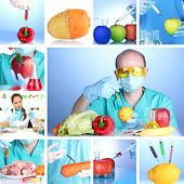 picture of genetic engineering  - Genetic engineering laboratory - JPG