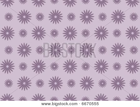 purple daisy background