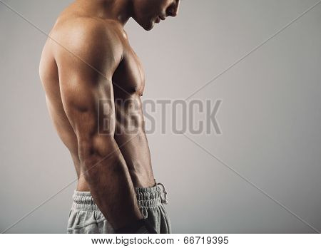 Muscular Man Torso On Grey Background With Copy Space