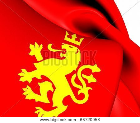 Ethnic Macedonian Lion Flag