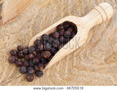 Juniper Berries In Wooden Scoop
