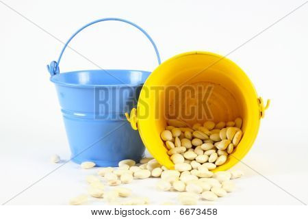 Bucket Of Beans